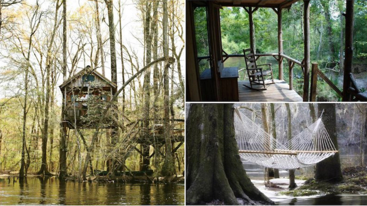 Edisto River Treehouses St George Roadtrippers