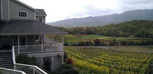 Arrowood Vineyards and Winery