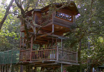 Out 'N' About Treehouse Resort