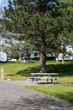 Green Tree Rv And Mobile Home Park Pasco Roadtrippers