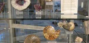 Barbour Cook Geology Museum