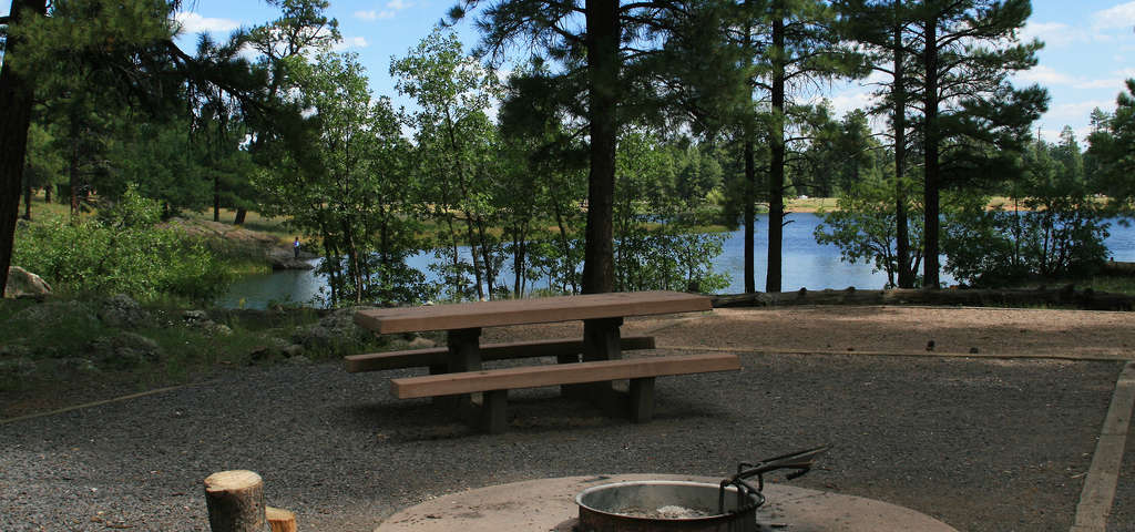 White horse lake campground williams roadtrippers for Fishing in williams az
