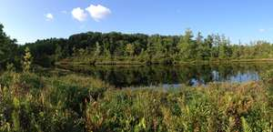 Portage Lakes Wetland State Nature Preserve