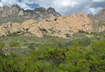 Dripping Springs Natural Area