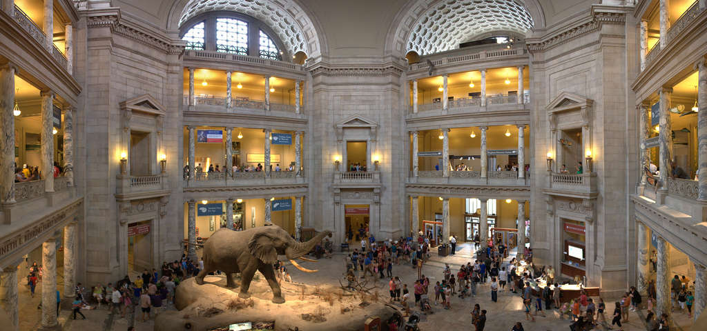 Smithsonian National Museum Of Natural History Washington Roadtrippers