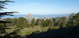 Morro Bay National Estuary