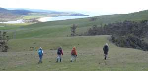 Outdoors Tasmania - Walking Tours Tasmania