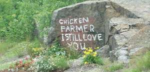 Chicken Farmer Rock