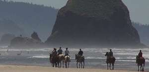 Sea Ranch Stable & Horseback Riding