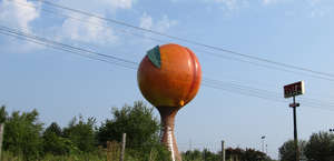Peachoid