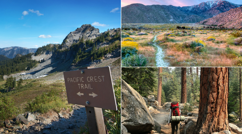 7 National Parks, 25 National Forests, & countless wonders: Meet America's ultimate hike