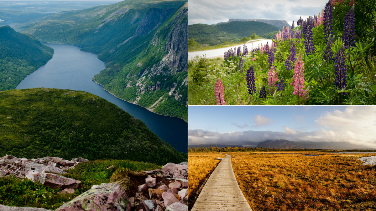 Explore shipwrecks, geological oddities, and epic landscapes at Gros Morne National Park