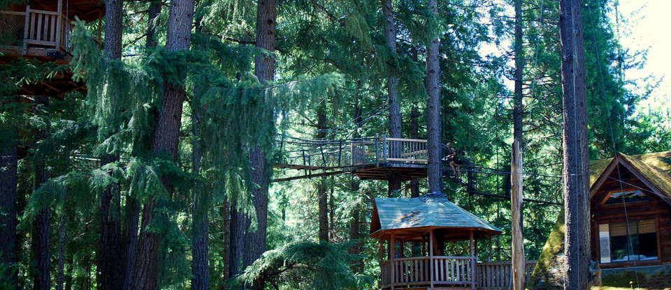 America's Best Treehouse Hotels