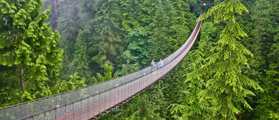 Travel Guide to Capilano Canyon